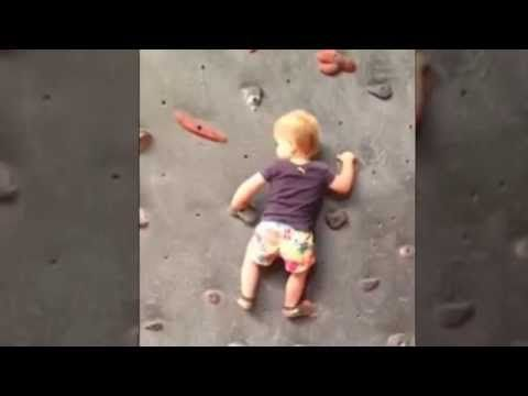 New Wall Climbing 19 month old CHILD Prodigy - Tops wall without harness - YouTube