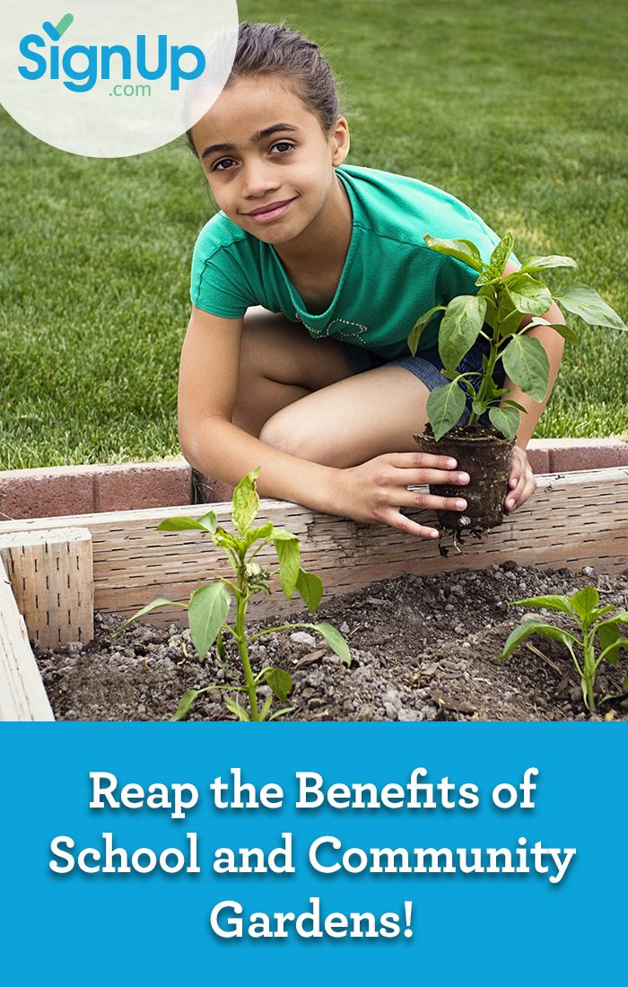 167e6ded99ba2e2e0f9c27c8d41fb4ca - Why Gardening Should Be Taught In Schools
