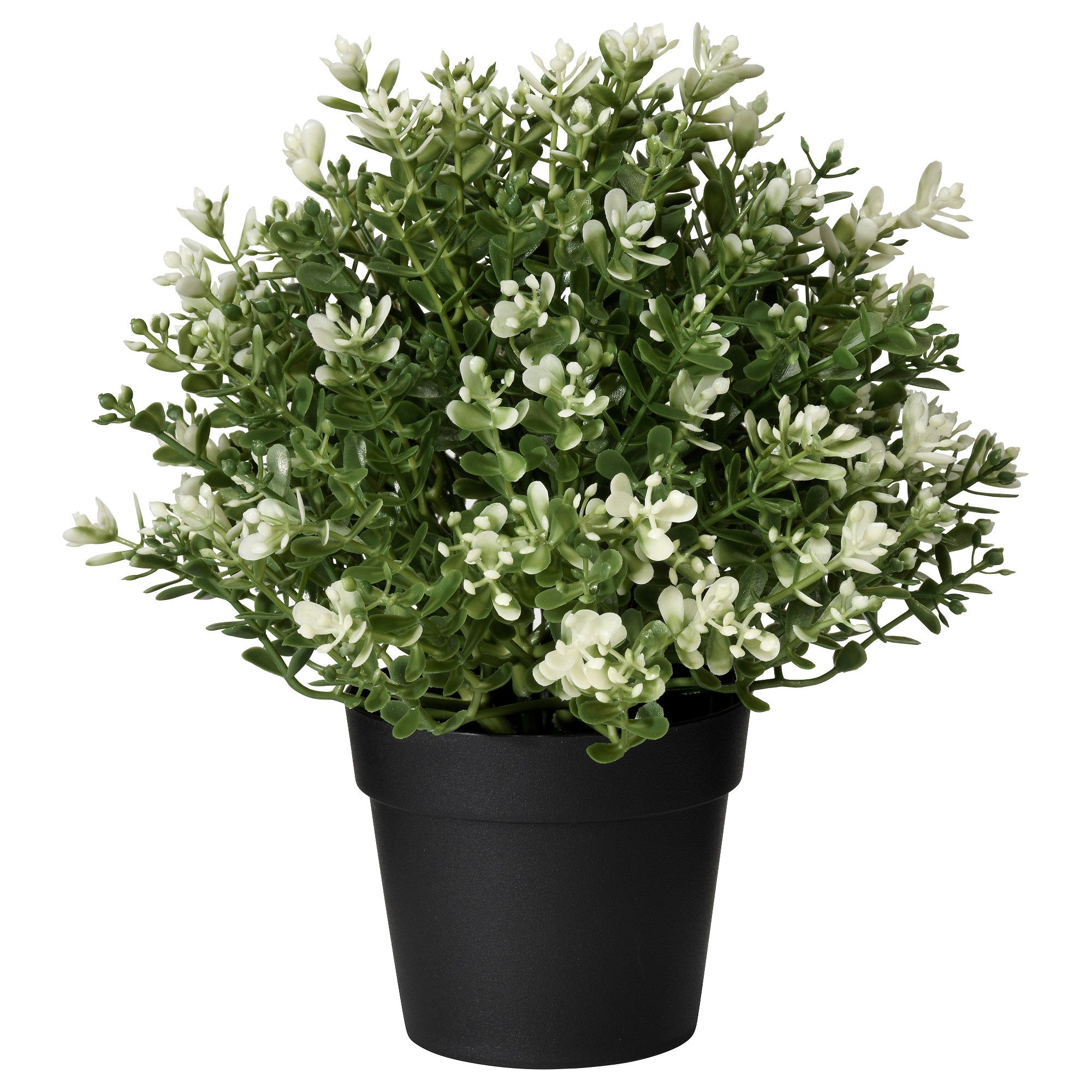 Fejka Artificial Potted Plant Thyme Ikea Artificial Potted Plants Artificial Plants Outdoor Small Artificial Plants