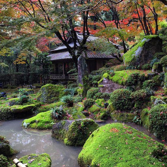 Zen Gardens, Water Gardens, Japanese Gardens, Japanese Homes, Garden Paths,  Moss Garden, Serenity Garden, Japan Garden, Garden Waterfall
