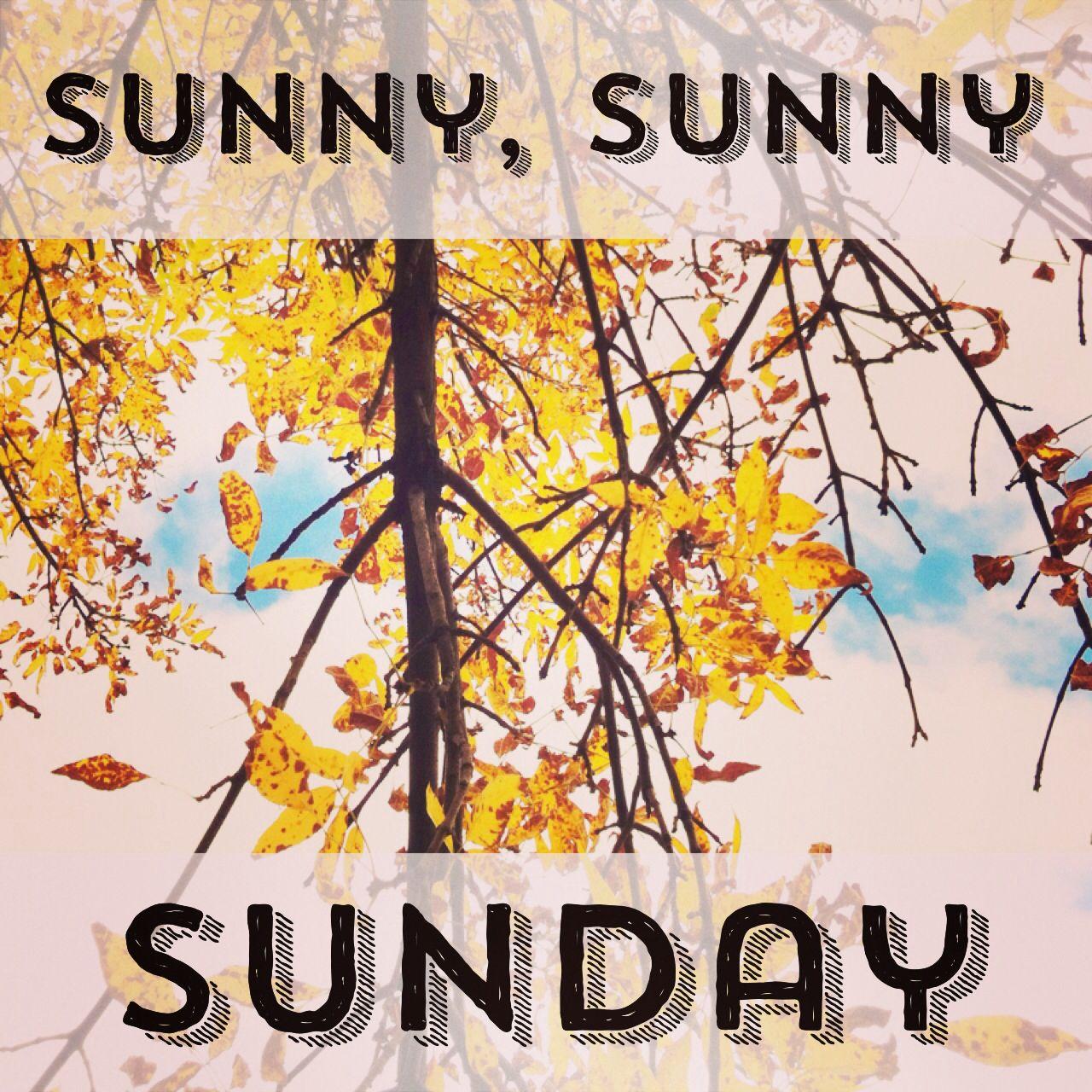 Sunny Sunday