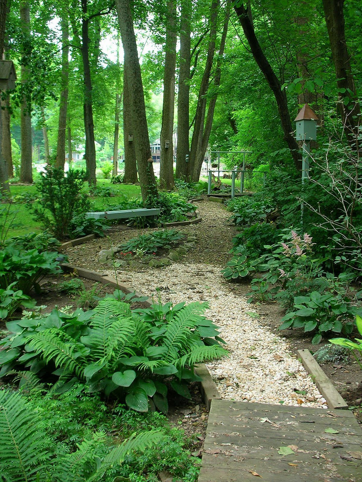 Backyard Woods Landscaping Backyard Woods Landscaping Design