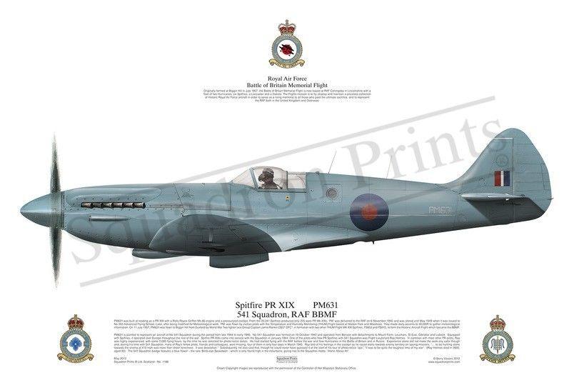 Spitfire PR.XIX in 2020   Prints, Fighter jets, War thunder