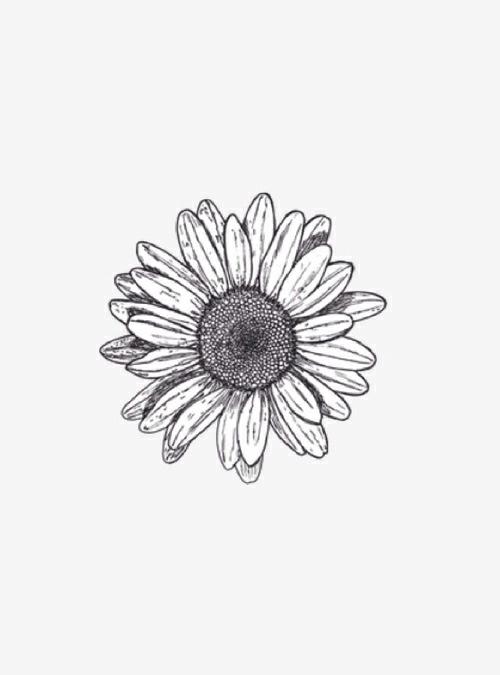 Gypsi Tattoos Tumblr Small Daisy Tattoo Sunflower Tattoos Tattoos