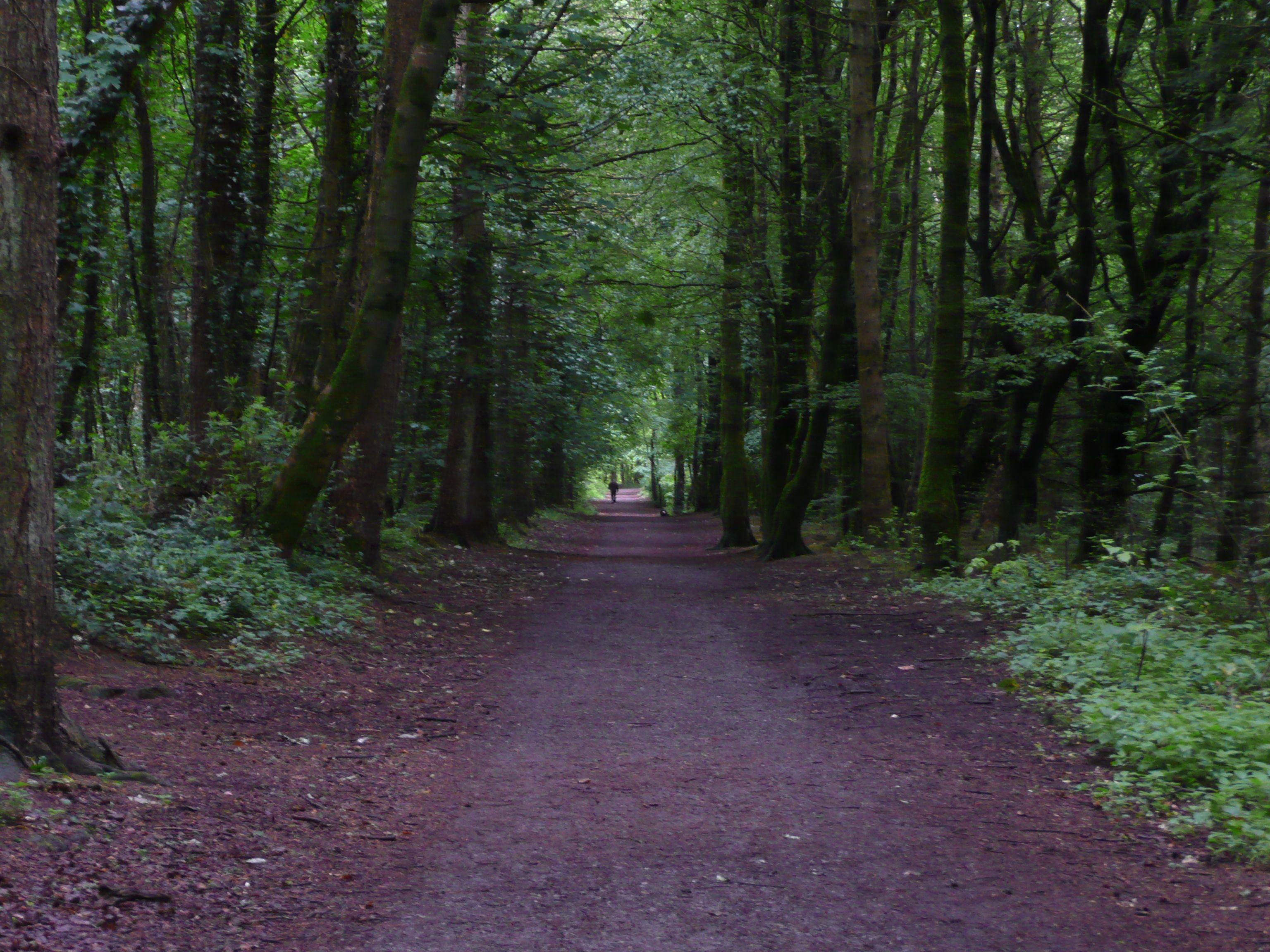 belleek woods ballina co mayo ireland favorite places