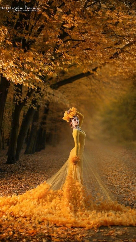 Is it a fairy tale?
