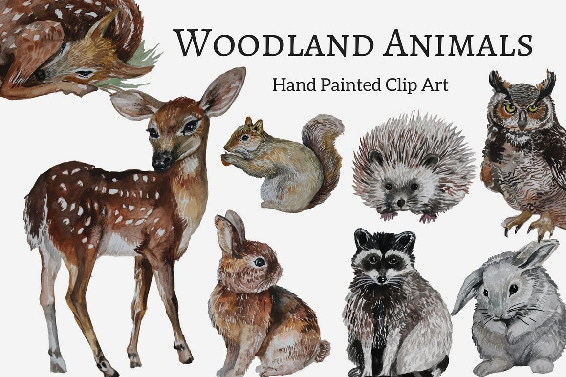 18+ Woodland animals clip art ideas in 2021
