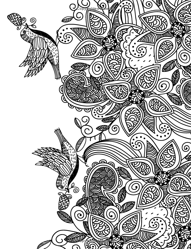 Coloring pages relaxing - Really Relaxing Colouring Book 5 Flights Of Fancy A Winged Journey Through Pattern And
