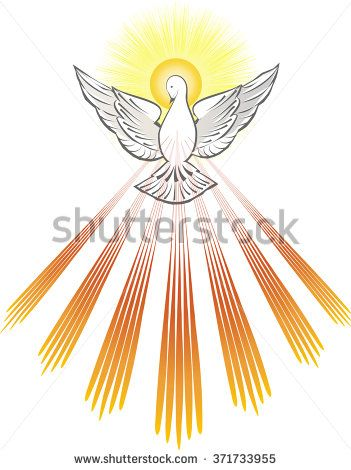 stock-vector-holy-spirit-symbol-a-white-dove-with-halo-of-light-rays ...