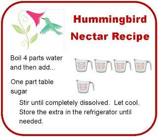 Homemade Hummingbird nectar recipe Next stop: Pinterest (With images) | Hummingbird nectar ...