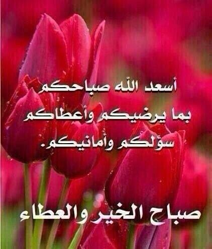 اسعد الله صباحكم ري Good Morning Arabic Good Night Messages Good Morning Images