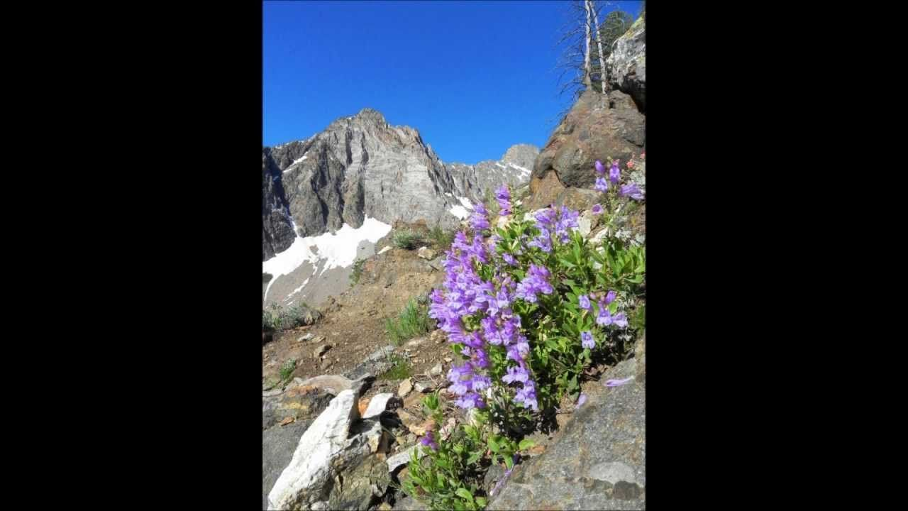 Sawtooth National Forest 2011