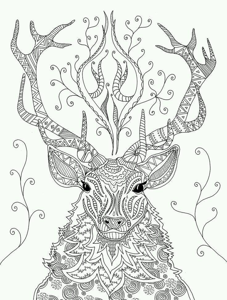 Раскраски антистресс - животные! ЛЕВ, бабочка, олень, слон ...