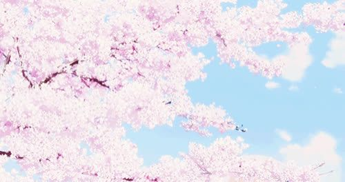 Aesthetic Anime Cherry Blossom Wallpaper Anime scenery