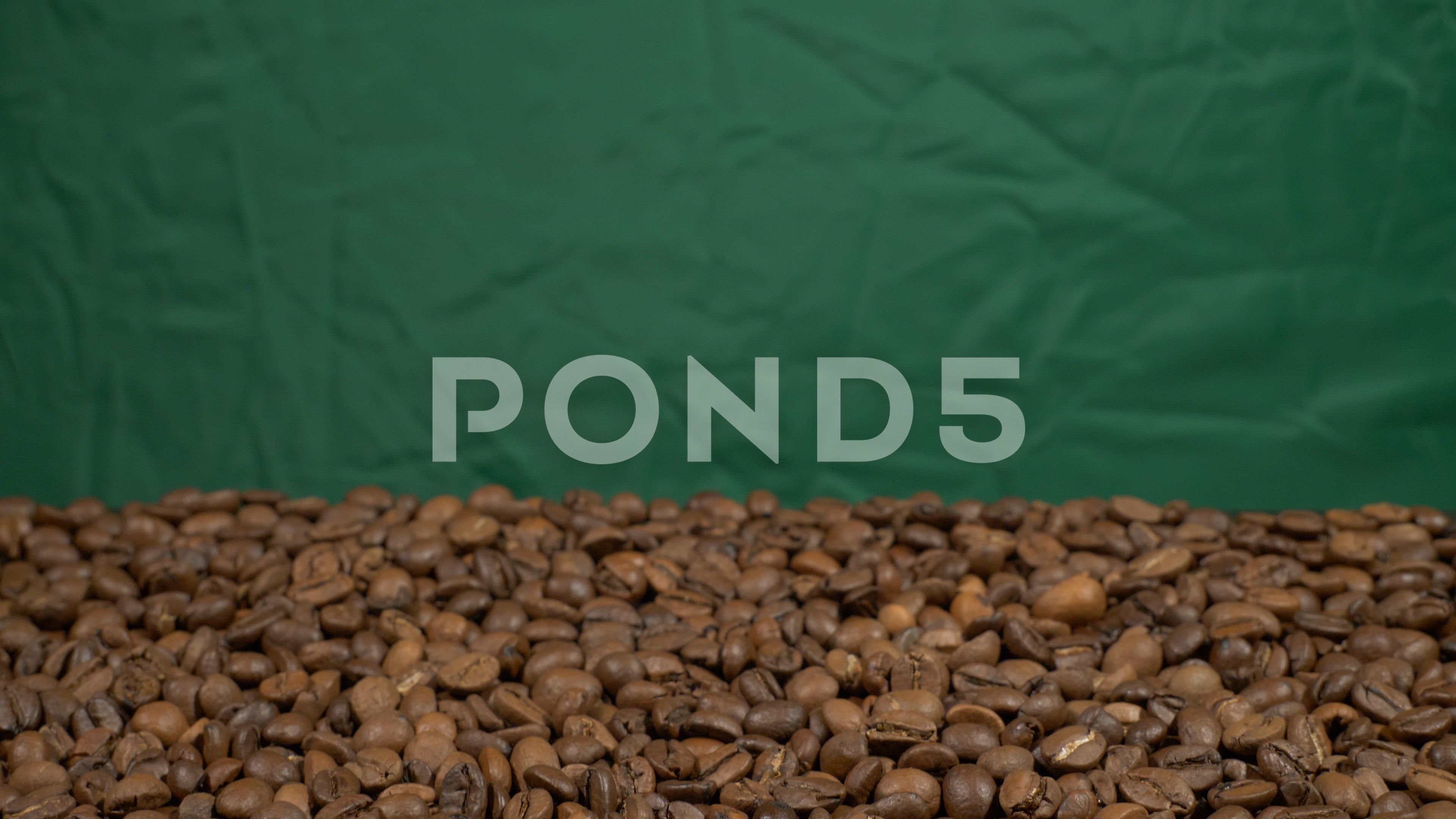 Tilt in out Fried of coffee beans on green screen prores