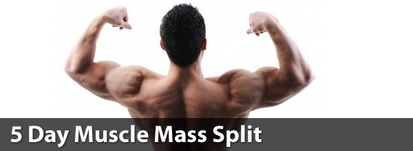 5 Day Muscle Mass Split | Jefit - Best Android and iPhone