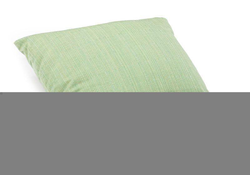 Parrot Large Pillow