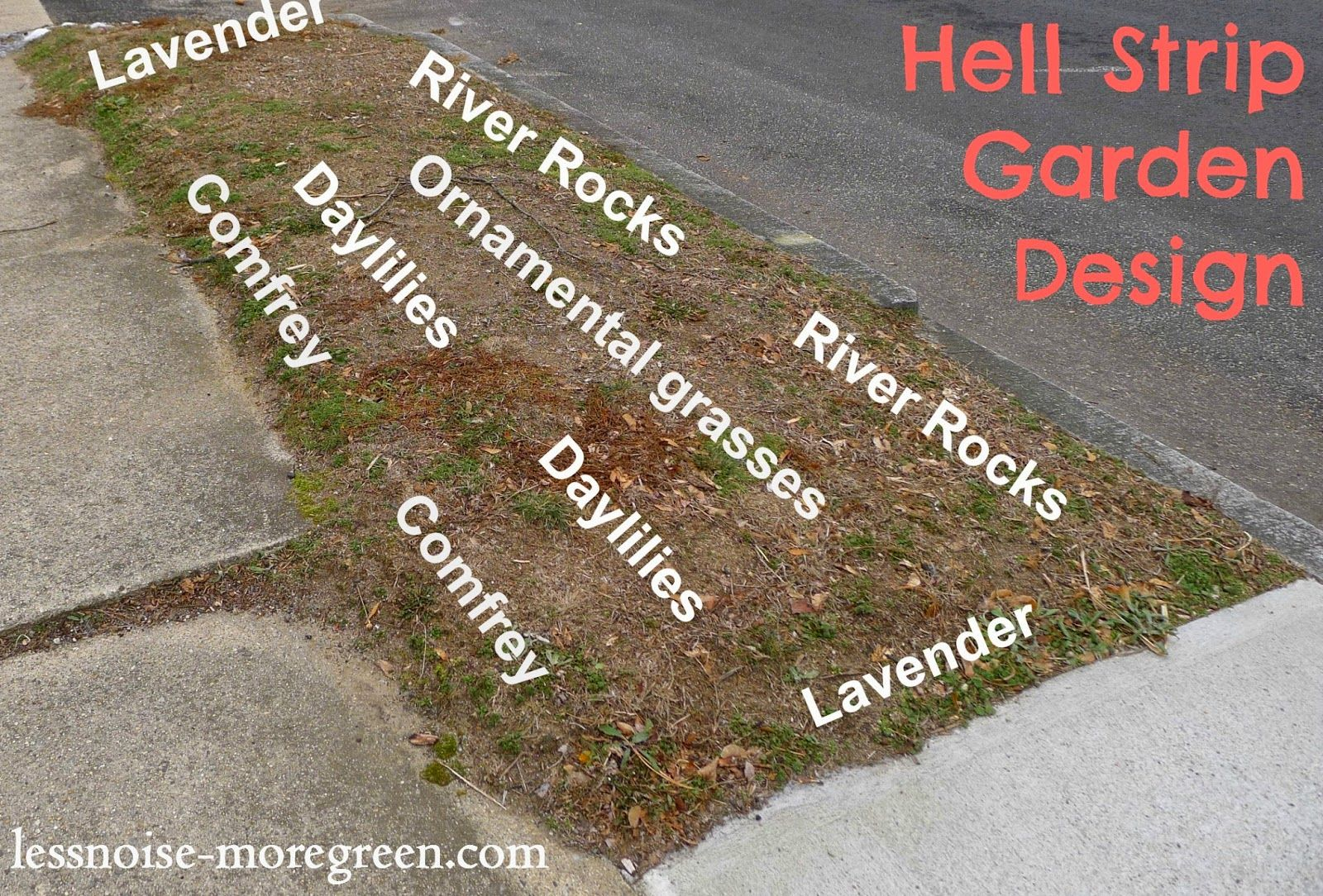 hell strip garden design for rhode island usa lessnoise moregreencom - Garden Design Usa