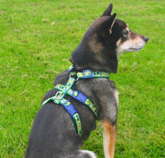 No Escape Harness Custom Designed By You Custom Design Dogs Pets