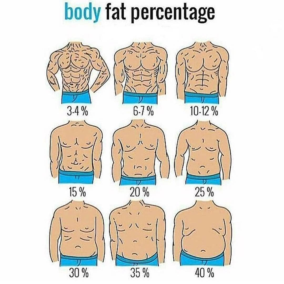 medium resolution of body fat per centage plz like and follow muscles gains