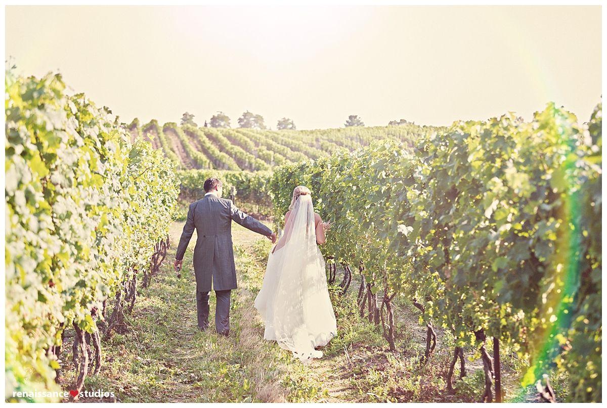 Bride u groom in the vineyard wine country weddings pinterest
