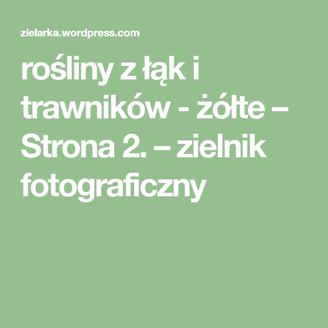 Rosliny Z Lak I Trawnikow Zolte Strona 2 Zielnik Fotograficzny Math Math Equations Writing