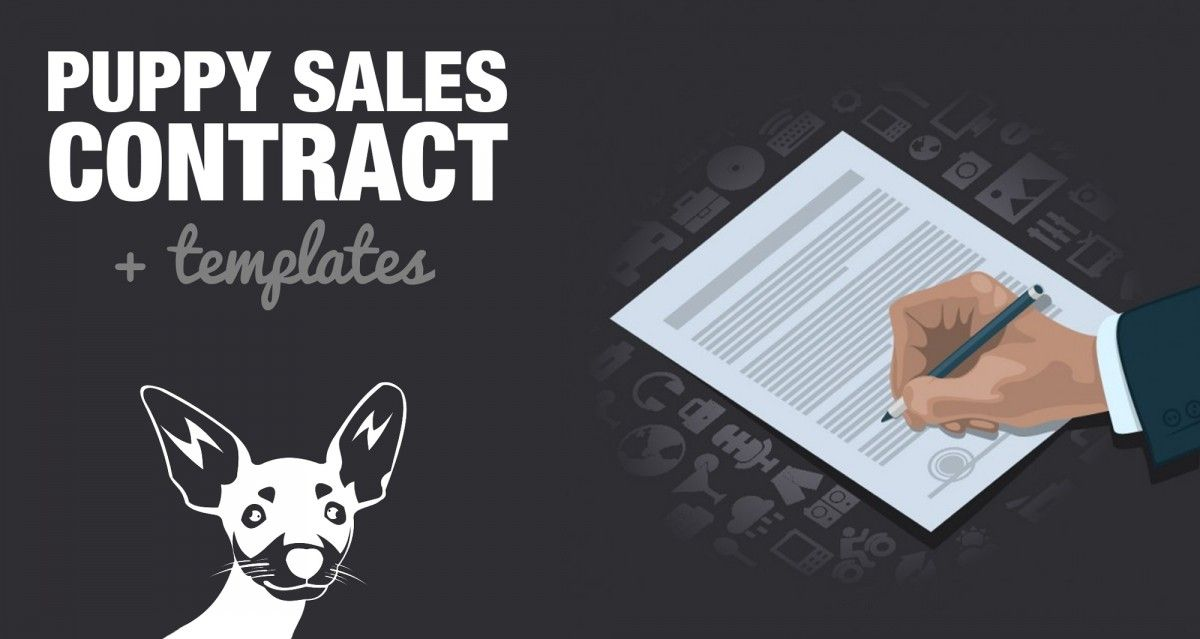 Free Puppy Sales Contract Template  Word/DOC Sample Dawgs