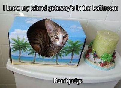 ... meine kleine Insel ...