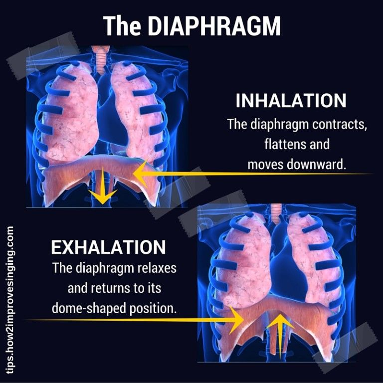 How to Sing From Your Diaphragm? Singing techniques