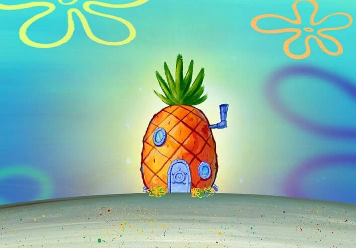 16++ Spongebob neighborhood info
