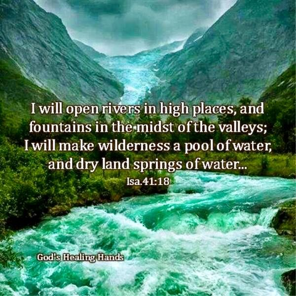 Image result for I will make in the wilderness a pool of water