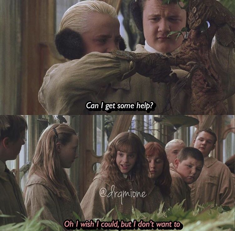 Pin By Marilyn Lindskold On Harry Potter Draco Malfoy Hermoine Granger Memes Harry Potter Funny Harry Potter Memes Hilarious Dramione