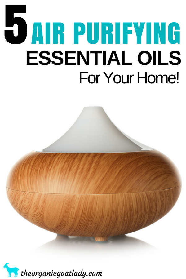 5 Essential Oils To Purify Air In Your Home