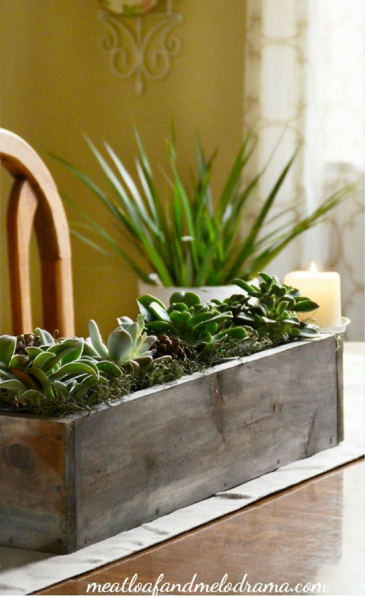 Make An Easy Succulent Centerpiece For Your Table This All Natural Arrangement Is P Diy Succulents Centerpiece Dining Table Centerpiece Succulent Centerpieces