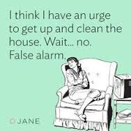 Saturday Night House Cleaning Meme Cleaning Quotes Funny Spring Cleaning Quotes Spring Cleaning Funny