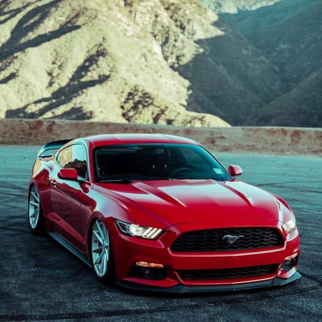 Ford Mustang, Ford Mustang Shelby, Mustang