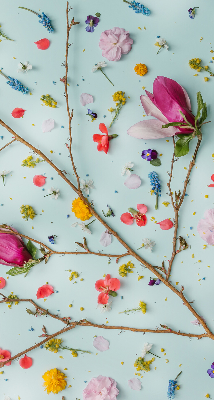 Flowers Pinterest At Wildrichkids Flower Wallpaper