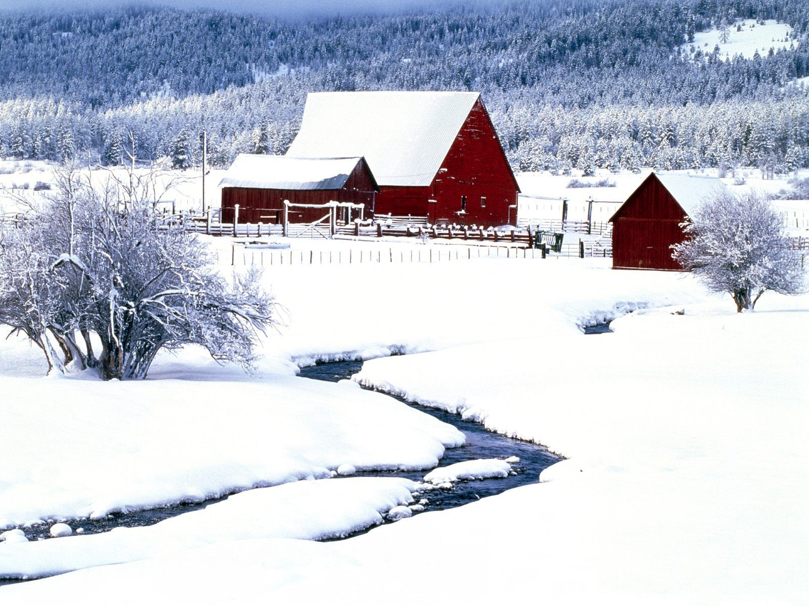 Snowy Barn Old Barns Barn Pictures Country Barns