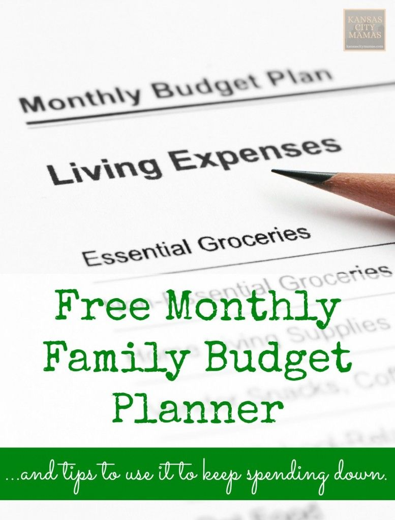 Free Monthly Family Budget Planner  Family Budget Planner