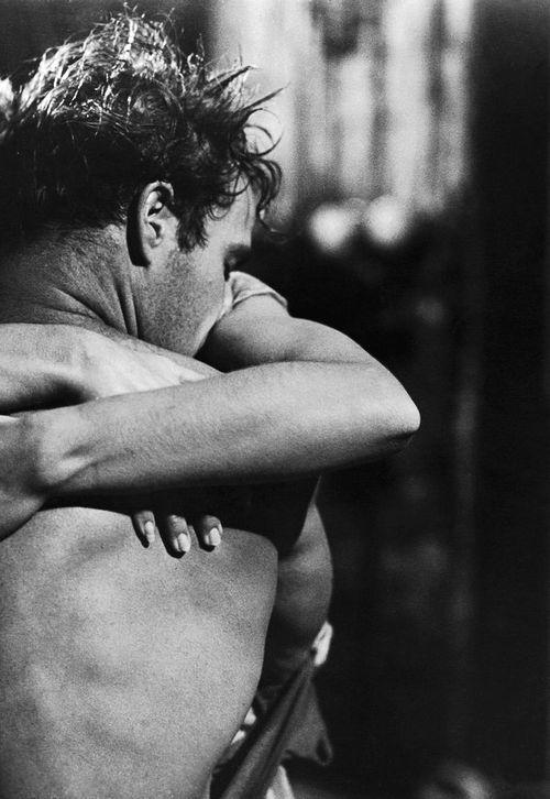 I want a coffee machine that runs on gasoline and drives me to work. We can  make love in the backse… | Marlon brando, Tram che si chiama desiderio,  Foto romantiche