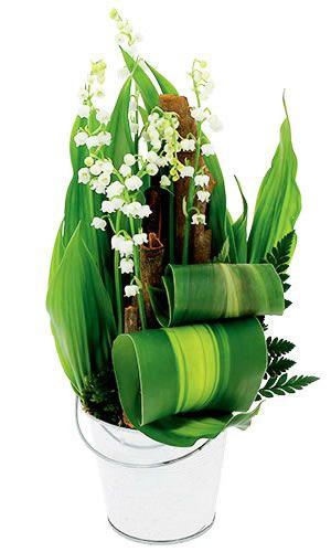 Balade muguet fleuristes et le charmes for Muguet livraison domicile
