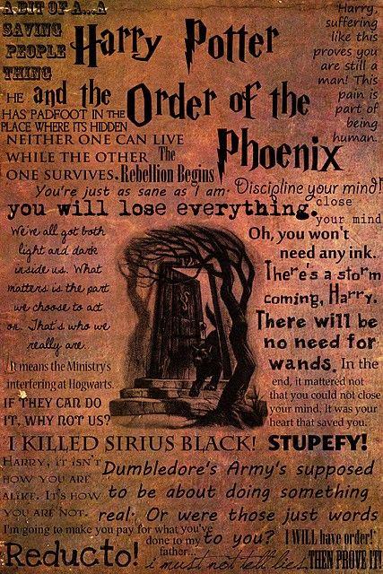 Harry Potter Order Of The Phoenix Humor Is Selective Pinterest