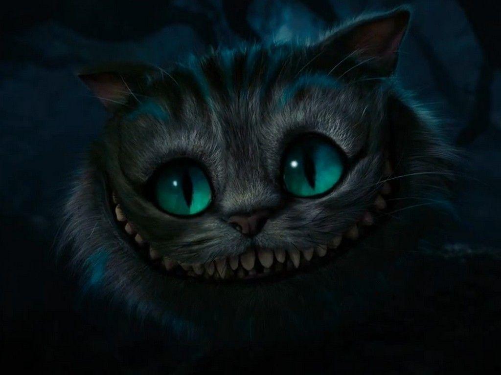 Alice In Wonderland By Tim Burton Alice Aux Pays Des Merveilles Chat De Cheshire Animaux Beaux