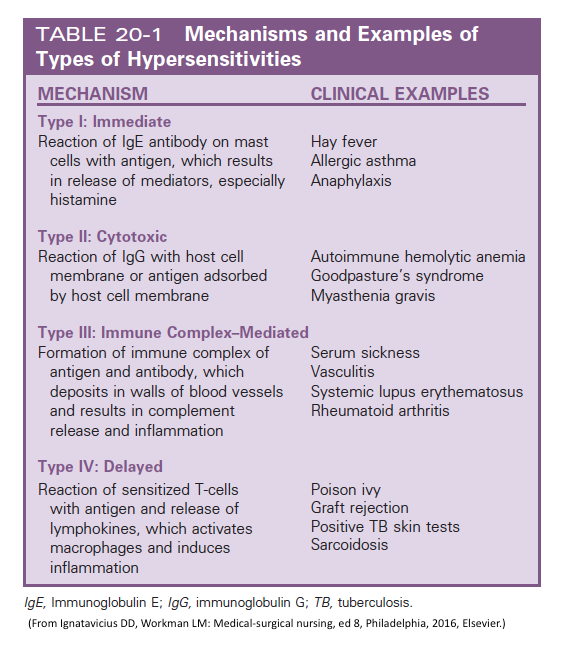 Mechanisms And Example Of Types Of Hypersensitivities Hypersensitivity Immunology Science Notes