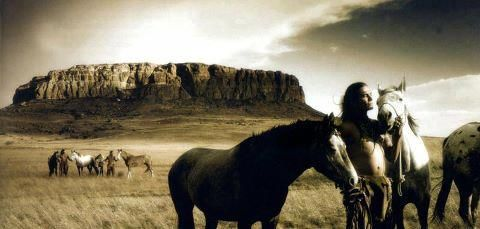 Pin By Alis On Native American Horses Indian Horses Free Horses