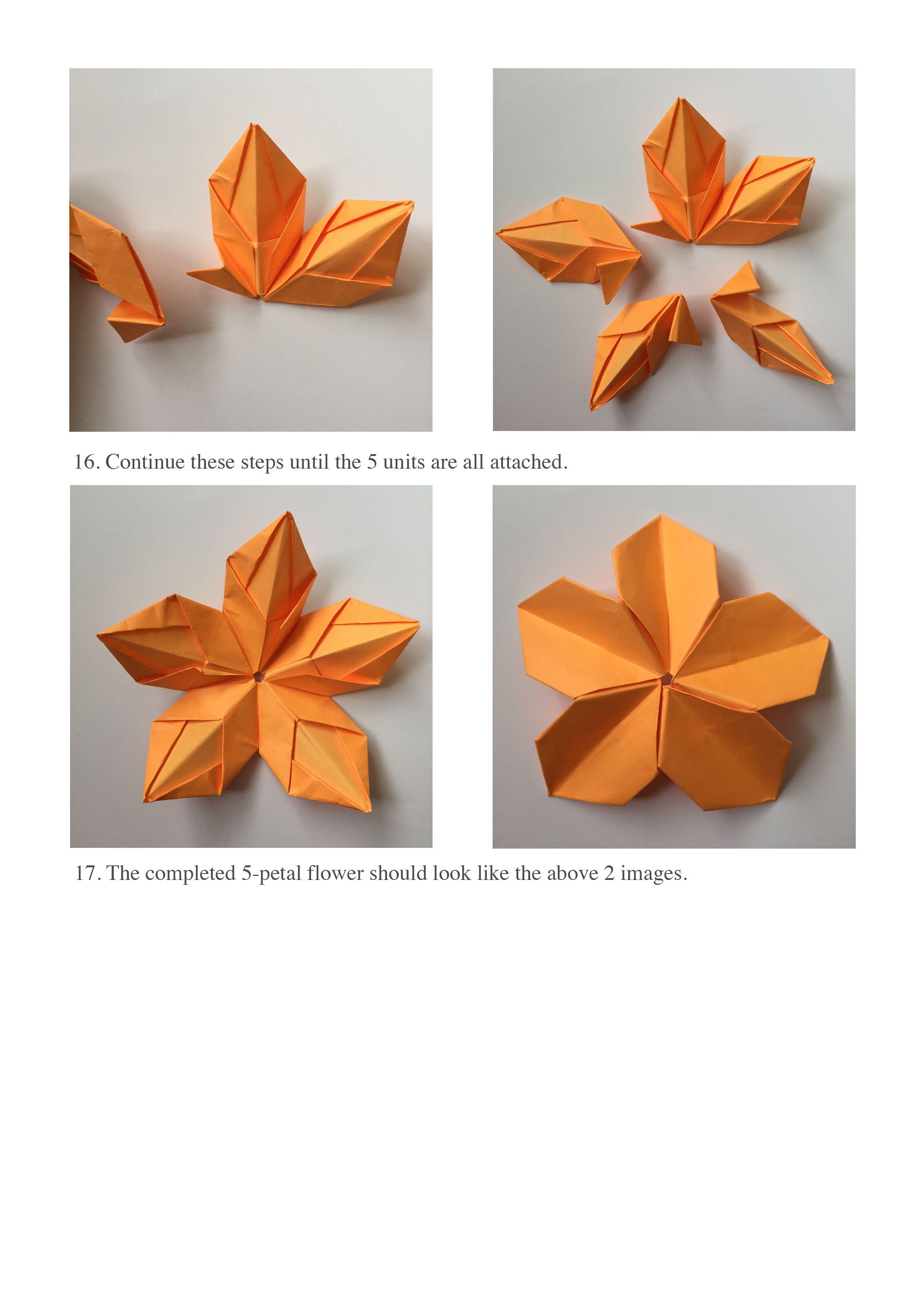 5 Petal Flower Steps 16 17 Assessment Tool Origami Pinterest