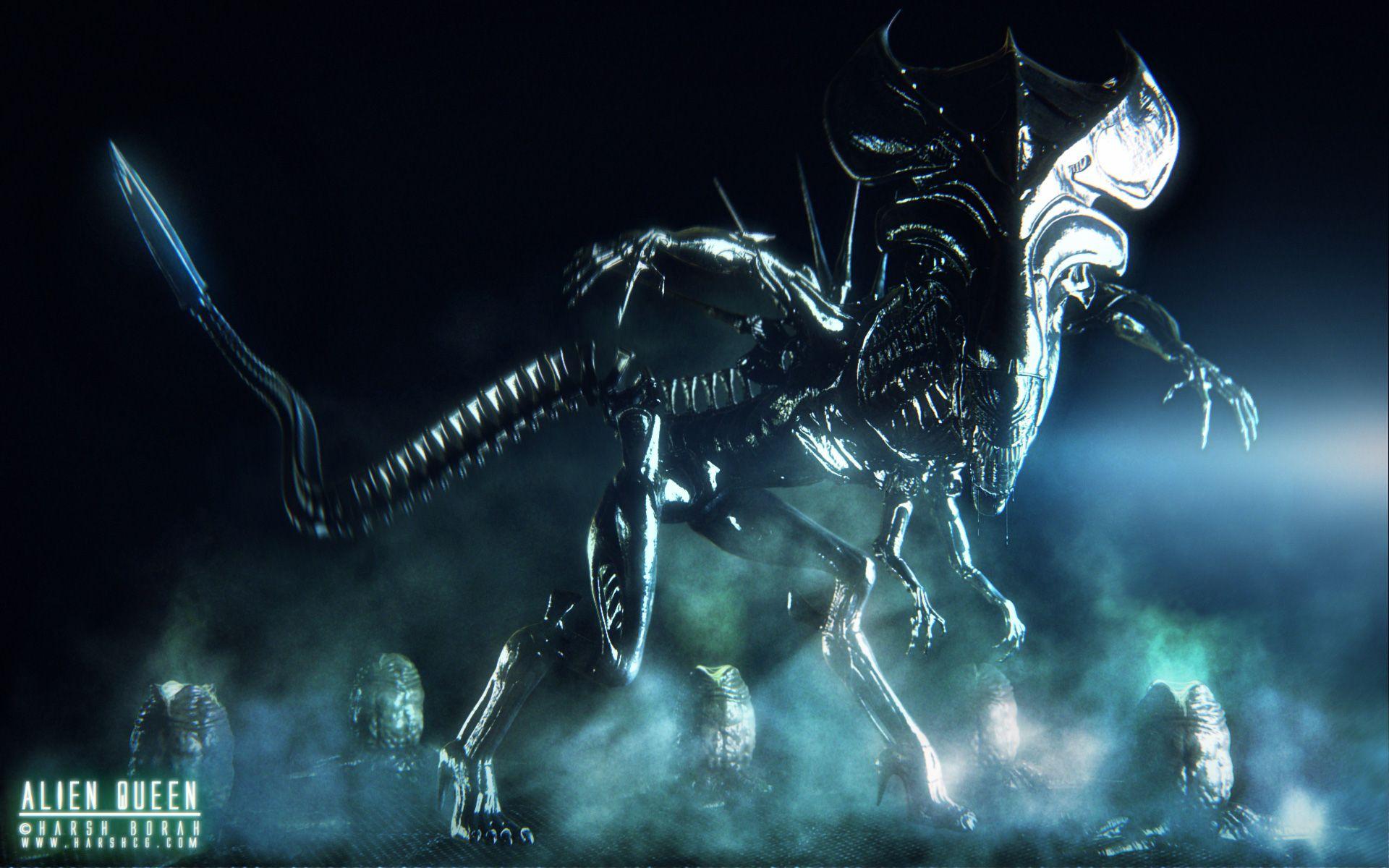 Xenomorph Queen Wallpaper aliens queen xenomorph...