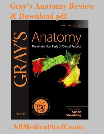 Download gray\'s clinical anatomy pdf free | All medical stuff ...