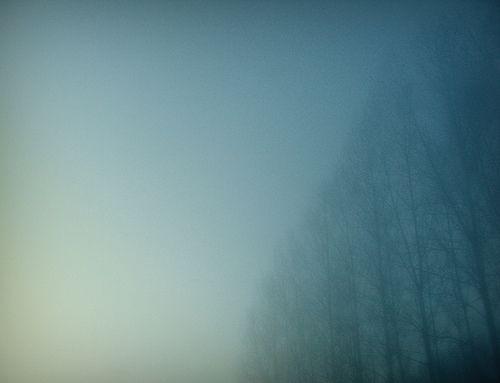 39:14:30:37 by Christina Coene, via Flickr