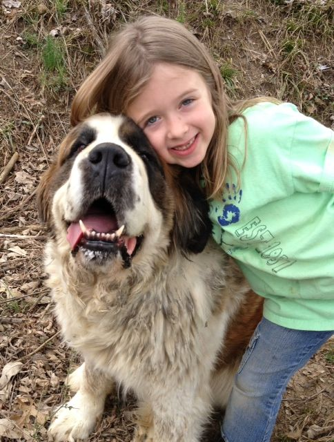 Everybody should hug a St. Bernard sometime in her life. My neighbor's dog, Roxie, likes hugs and she's good at sharing her slobber too. :)
